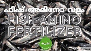 ഫിഷ് അമിനോ ആസിഡ് ഉപയോഗിക്കുന്ന വിധം - usage of fish amino acid