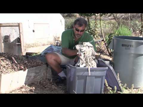 How to Compost Vermiform