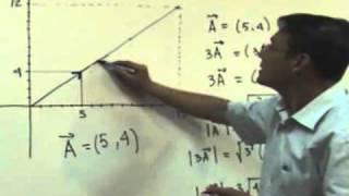 Clase 3 Multiplicación por un escalar y Vector Unitario