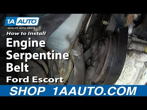 How To Install Replace Engine Serpentine Belt Ford Escort ZX2 2.0L DOHC