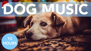 CHRISTMAS DOG MUSIC! Angels We Have Heard on High Classic for Dogs!