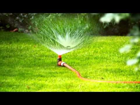 Grass Watering Best Way To Water The Lawn And Use A Sprinkler   Sound Effect 31