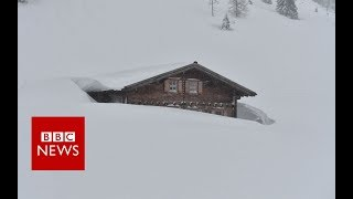 Europe battles worst snowfall in decades - BBC News