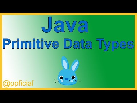 Java Primitive Data Types - byte short int long float double char and boolean - Java Tutorial