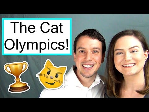 The 2018 Cat Olympics | Cats & Pats Exclusive Coverage