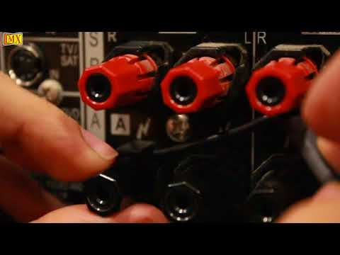How to connect Amplifier & Speakers using Y Connector