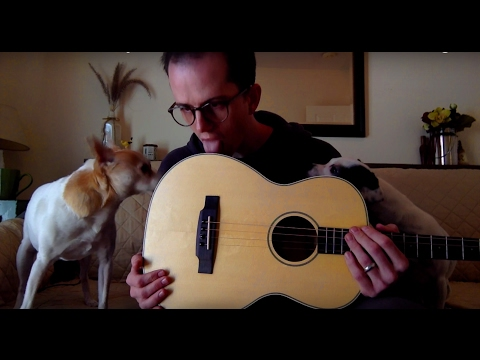 KALA TENOR GUITAR:       Pretty salty, a little spicy with some butternut