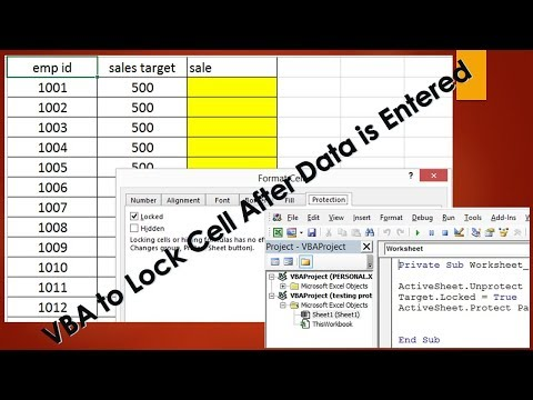 VBA to Lock cells After Data Entry - Excel VBA Example by Exceldestination