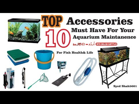 Top 10 Aquarium Accessories must have for your aquarium maintenance ,fish keepers must have this