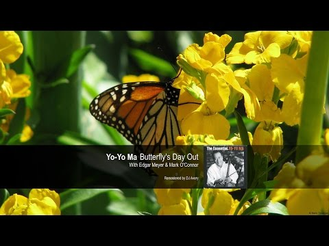 Yo-Yo Ma - Butterfly's Day Out