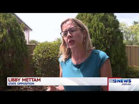 Shark debate | 9 News Perth