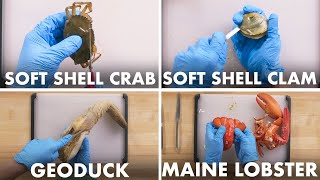 How To Open Every Shellfish | Method Mastery | Epicurious