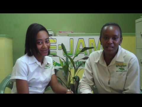 Employment Jamaica Work Program In Canada