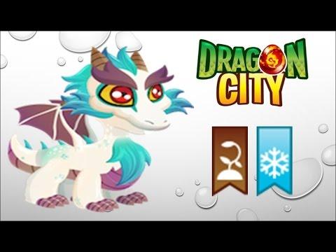 Dragon City - Getting Great White Dragon 100% (No Hack)