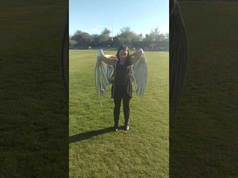 Dragon wings test!