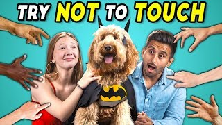 Try Not To Touch Challenge #4   Dogs Try Cosplay (Pawsplay Edition)