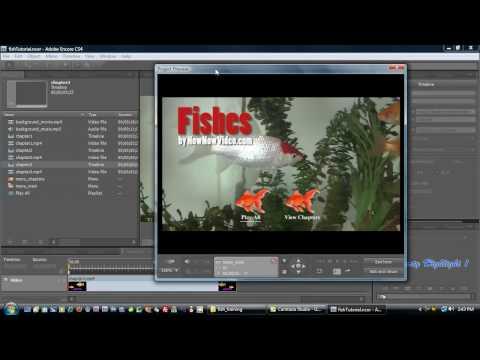 Adobe Encore Advanced Motion Menus
