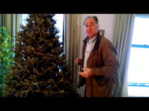 How to Remove a Christmas Tree From a NYC Apartment