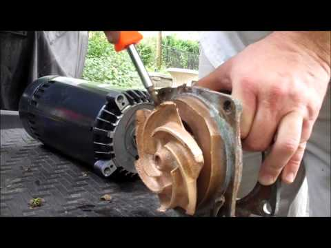 Anthony (Sta-Rite) Bronze Pool Pump Motor Replacement