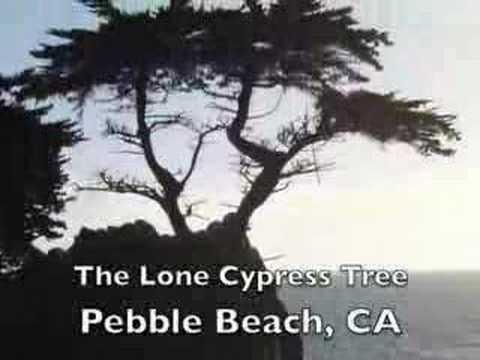 Pebble Beach - 17 Mile Drive