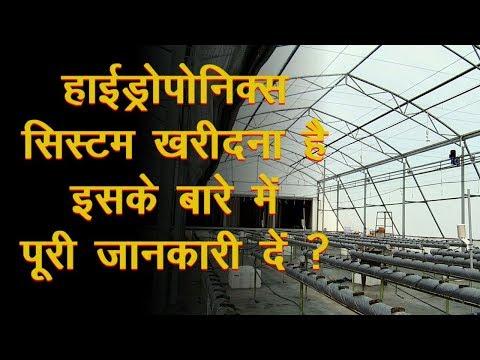 किसान जाने Hydroponics System Set-Up Cost के बारे मे | Kuldeep Singh from Haryana