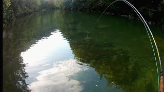 Catching big brown trout|Fly fishing for big brown trout|Fly fishing Croatia