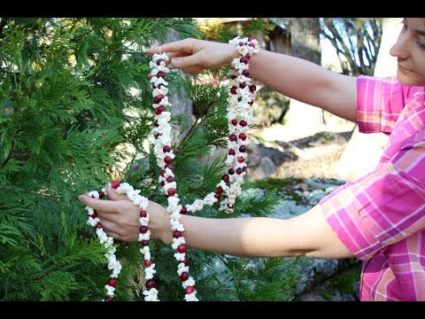 How to Make a Popcorn Garland for your Christmas Tree   Sophie's World