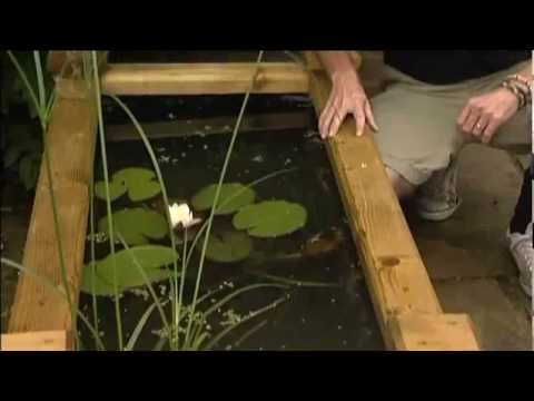 How to make a Wooden Raised Bed Pond