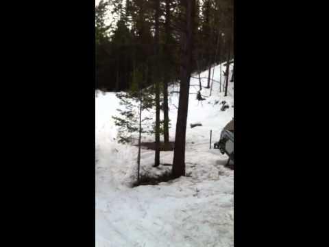 Snowmobile Princeton BC