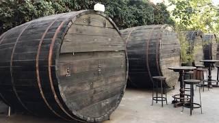 ღვინის ქარხანა***თბილისი