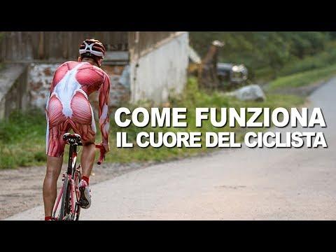 CICLISMO: Come Funziona il Cuore del Ciclista