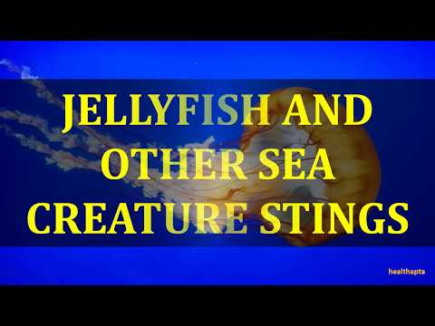 12122  JELLYFISH AND OTHER SEA CREATURE STINGS