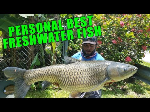 HUGE FRESHWATER FISH!!! Personal Best! Monster Mike