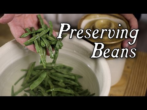 An Easy Way To Keep Green Beans -- 18th Century Food Preservation
