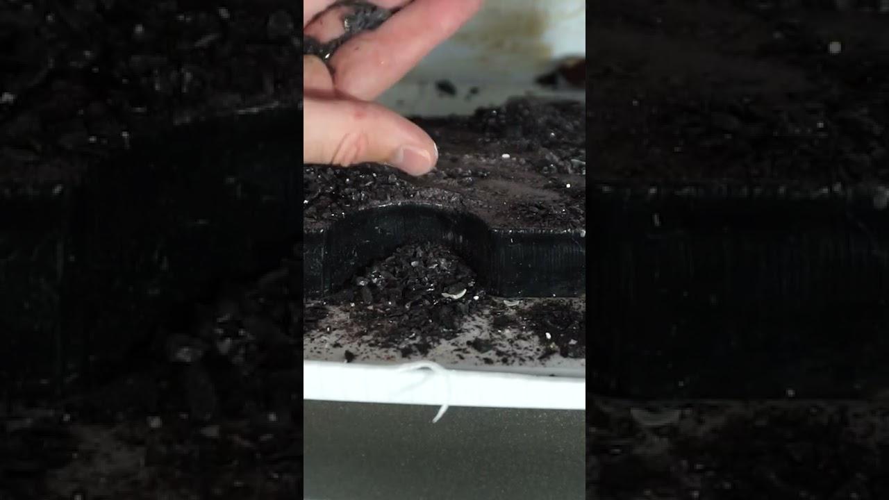 Don't Crush Obsidian