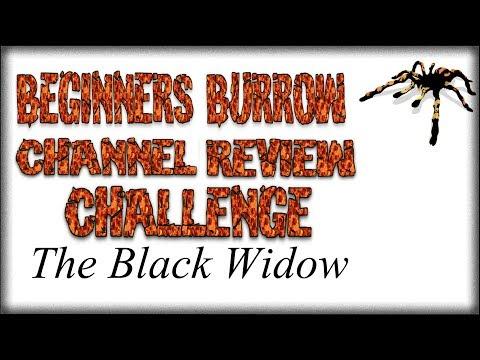 CRC Black Widow - Beginners Burrow
