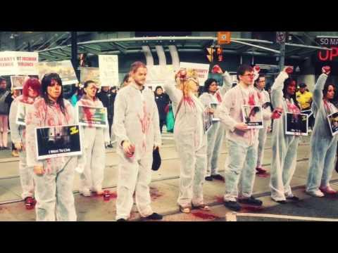 DxE Toronto Anti Fur March