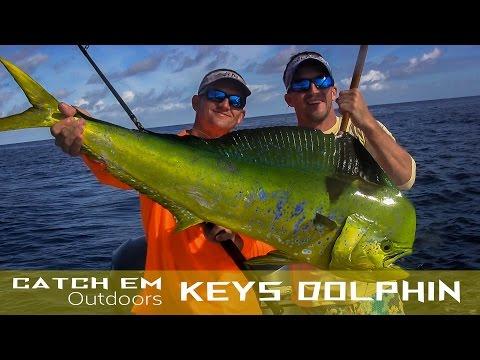 Florida Dolphin Fishing Florida Keys Dolphin Fishing Mahi Mahi HD