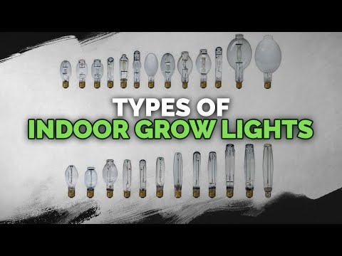 Indoor Grow Lights: CFL, LED, HPS, MH, CMH, and More Explained!