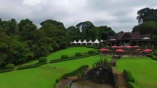 Kebun Raya Bogor Grand Garden Cafe/Cafe Dedaunan Stunning Landscape View From A Drone