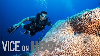 Scientists Are Breeding Super Coral That Can Survive Climate Change: VICE on HBO, Full Episode