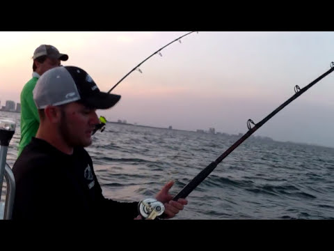 Monster Kingfish Fishing