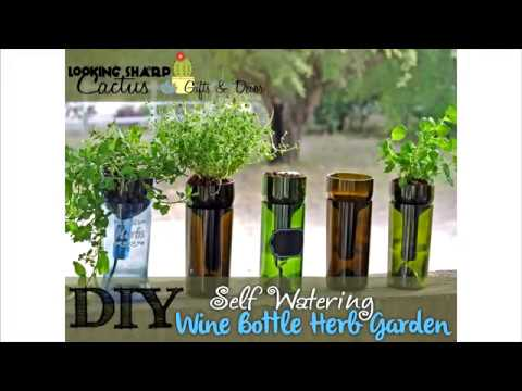 Self-Watering Wine Bottle Herb Planter – Hydroponic Indoor Garden!