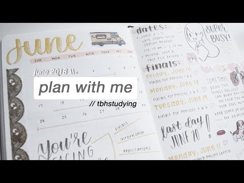 june 2018 plan with me :