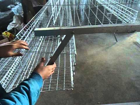 install video for chicken cages