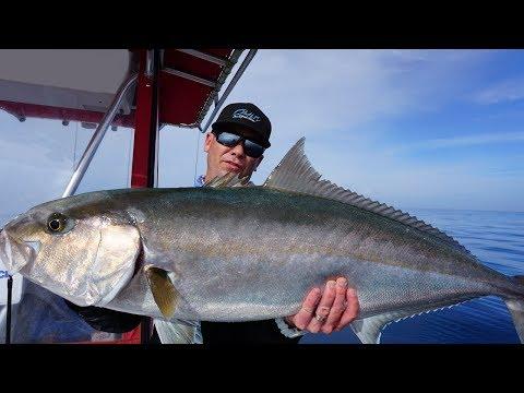 Catching Giant Amberjacks on Topwater - Saltwater Fishing Florida