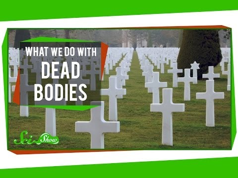 What We Do With Dead Bodies