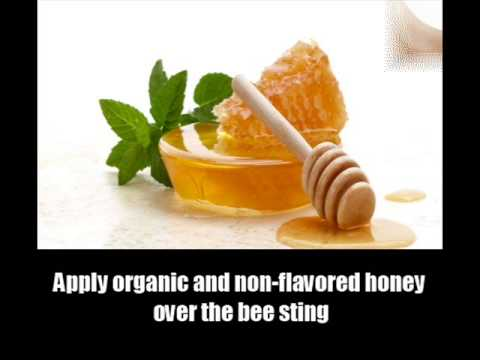 7 Effective Home Remedies For Bee Stings