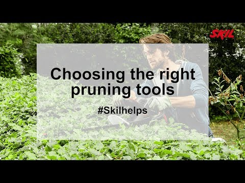Choosing the right pruning tools