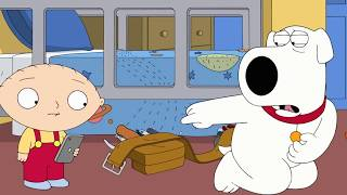 Family Guy – Brian Works At Mega Hardware HD 720p